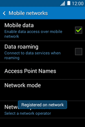 Samsung Galaxy Young 2 - Network - Usage across the border - Step 12
