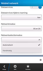 BlackBerry Z10 - Buitenland - Bellen, sms en internet - Stap 8
