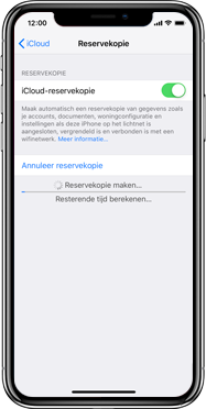 Apple iphone-xs-model-A1920 - Instellingen aanpassen - Back-up maken in je account - Stap 14