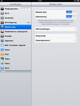 Apple iPad - Internet - handmatig instellen - Stap 3