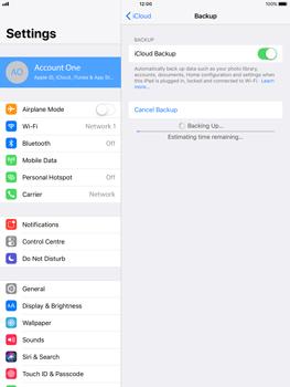 Apple Apple iPad Pro 9.7 - iOS 11 - Device maintenance - Create a backup of your data - Step 14