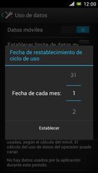 Sony Xperia J - Internet - Ver uso de datos - Paso 7