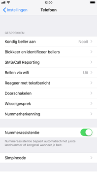 Apple iPhone 7 Plus - iOS 12 - Bellen - bellen via wifi (VoWifi) - Stap 4