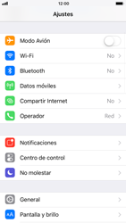 Apple iPhone 6 - iOS 11 - Internet - Activar o desactivar la conexión de datos - Paso 3