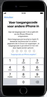 Apple iphone-6-met-ios-11-model-a1586 - Instellingen aanpassen - Hoe gebruik ik de Automatisch inloggen-optie - Stap 17