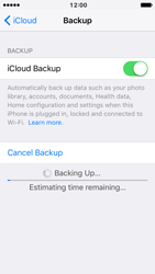 Apple iPhone 5c iOS 10 - Device maintenance - Create a backup of your data - Step 12
