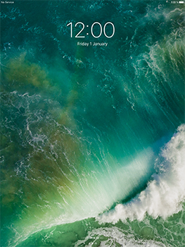 Apple iPad Pro 12.9 (1st gen) - iOS 10 - Internet - Manual configuration - Step 14