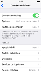Apple iPhone SE - iOS 12 - Réseau - utilisation à l'étranger - Étape 5
