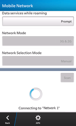 BlackBerry Z10 - Network - Usage across the border - Step 10