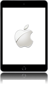 Apple ipad-mini-5-7-9-inch-2019-model-a2124
