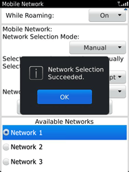 BlackBerry 9810 Torch - Network - Usage across the border - Step 10