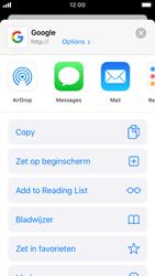 Apple iphone-se-met-ios-13-model-a1723 - Internet - Hoe te internetten - Stap 5