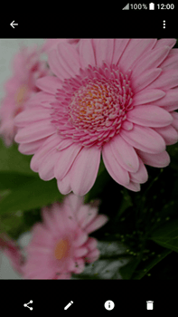 HTC Desire 825 - Photos, vidéos, musique - Prendre une photo - Étape 14