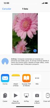 Apple iPhone X - Funciones básicas - Uso de la camára - Paso 12