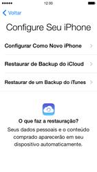 Apple iPhone iOS 7 - Primeiros passos - Como ativar seu aparelho - Etapa 14