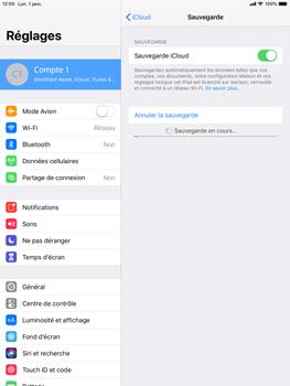 Apple iPad 9.7 (2018) iOS12 - Données - créer une sauvegarde avec votre compte - Étape 13