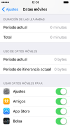 Apple iPhone SE iOS 10 - Internet - Ver uso de datos - Paso 4