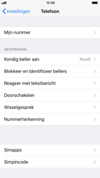 Apple iphone-6-met-ios-11-model-a1586 - Beveiliging en ouderlijk toezicht - Hoe wijzig ik mijn SIM PIN-code - Stap 4