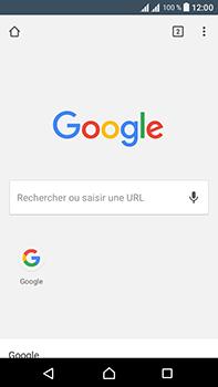 Sony Xperia L1 - Internet - Navigation sur internet - Étape 16