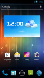 Huawei Ascend P1 LTE - Internet - Populaire sites - Stap 16