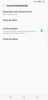 Samsung Galaxy S8 Plus - Internet - Ver uso de datos - Paso 14
