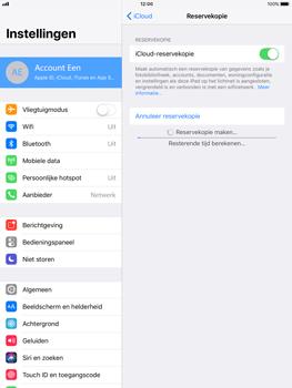 Apple Apple iPad Pro 9.7 - iOS 11 - Device maintenance - Back up - Stap 13
