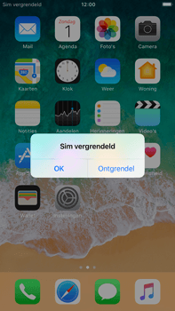 Apple iPhone 6 Plus - iOS 11 - MMS - Handmatig instellen - Stap 14
