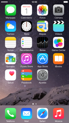 Apple iPhone 6 iOS 8 - Internet - Ver uso de datos - Paso 1