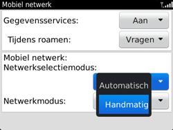 BlackBerry 9790 Bold - Netwerk - Gebruik in het buitenland - Stap 6