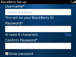 BlackBerry 9720 Bold - Applications - Downloading applications - Step 11