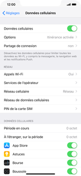 Apple iPhone XR - Internet - Utilisation à l
