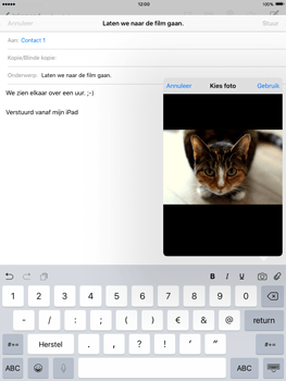 Apple iPad mini iOS 9 - E-mail - Bericht met attachment versturen - Stap 11