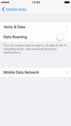 Apple iPhone SE - iOS 10 - Internet - Disable data roaming - Step 6