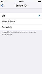 Apple iPhone SE - iOS 12 - Network - Enable 4G/LTE - Step 6