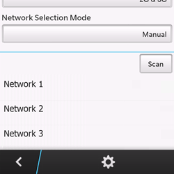 BlackBerry Q10 - Network - Usage across the border - Step 9