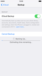 Apple Apple iPhone 7 - Device maintenance - Create a backup of your data - Step 12