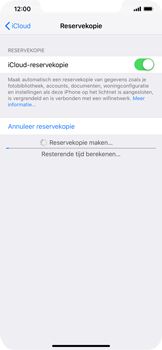 Apple iPhone XS Max - Data - maak een back-up met je account - Stap 13
