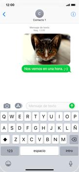 Apple iPhone X - Mensajería - Escribir y enviar un mensaje multimedia - Paso 16