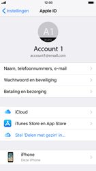 Apple iPhone 6s - iOS 11 - Beveiliging en privacy - Zoek mijn iPhone activeren - Stap 4