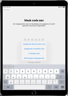 Apple ipad-mini-4-met-ios-12-model-a1550 - Instellingen aanpassen - Activeer het toestel en herstel jouw iCloud-data - Stap 14