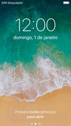 Apple iPhone SE - iOS 11 - Internet no telemóvel - Como configurar ligação à internet -  14