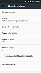 Acer Liquid Z6 Dual SIM - Netwerk - Software updates installeren - Stap 6