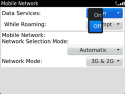 BlackBerry 9900 Bold Touch - Internet - Enable or disable - Step 6