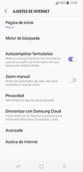 Samsung Galaxy S8 - Internet - Configurar Internet - Paso 29