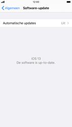 Apple iphone-6s-met-ios-13-model-a1688 - Software updaten - Update installeren - Stap 6