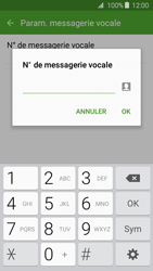 Samsung Galaxy J3 (2016 (J320) - Messagerie vocale - configuration manuelle - Étape 9