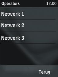 Nokia Asha 203 - Buitenland - Bellen, sms en internet - Stap 8