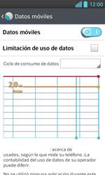 LG Optimus L5 II - Internet - Ver uso de datos - Paso 8