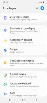 Samsung Galaxy A20e - Beveiliging en privacy - automatische schermblokkering instellen - Stap 4