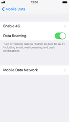 Apple iPhone 5s - iOS 11 - Internet - Disable data roaming - Step 5